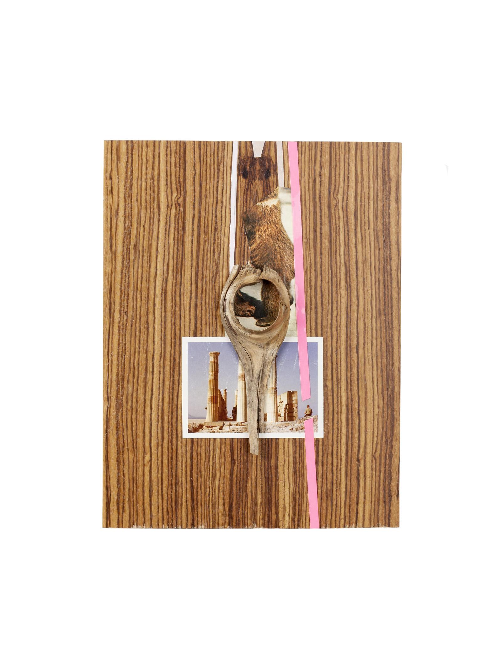 """o.T. aus """"Endemisches Kollegium"""", 2018, 29,5 x 22,6 x 2,8 cm, Assemblage diverser Materialien auf Holzfurnier"""
