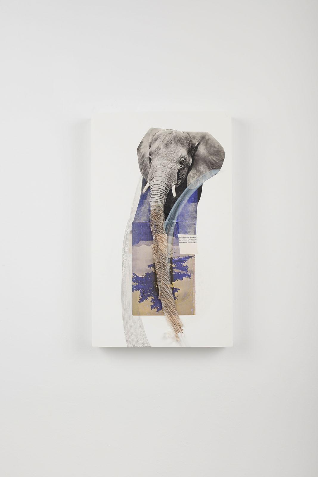 """o.T. aus """"Petrichor"""", 2018, 50 x 30 cm, Mischtechnik, Collage & Schlangenhaut auf Holz"""