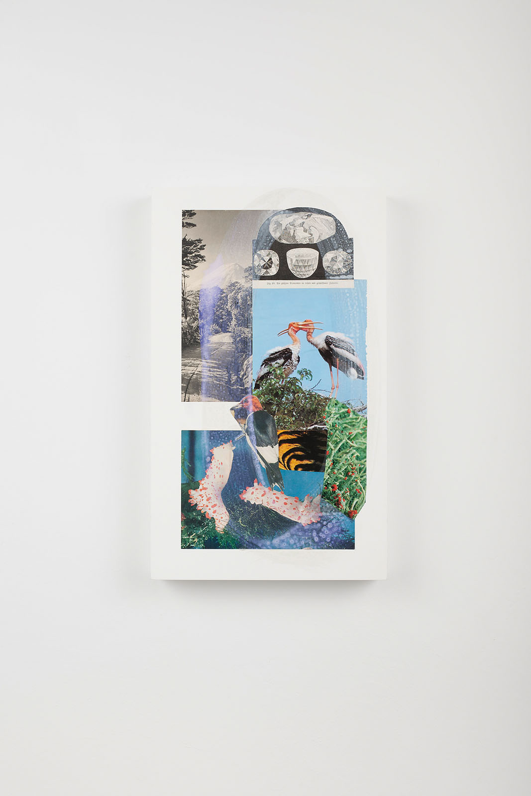 "o.T. aus ""Petrichor"", 2018, 50 x 30 cm, Mischtechnik & Collage auf Holz"