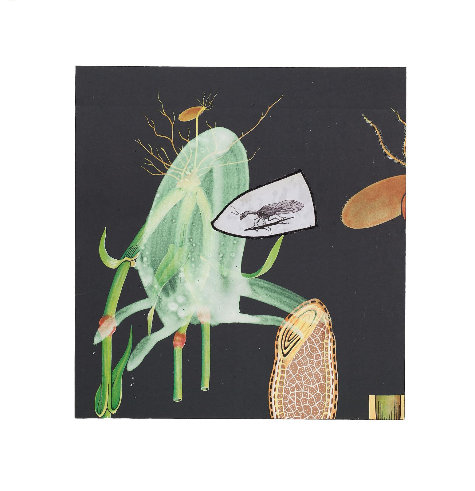 """o.T. aus """"Petrichor – Deep Sea"""", 2017, 43 x 40 cm, Mischtechnik & Applikation auf Siebdruck"""
