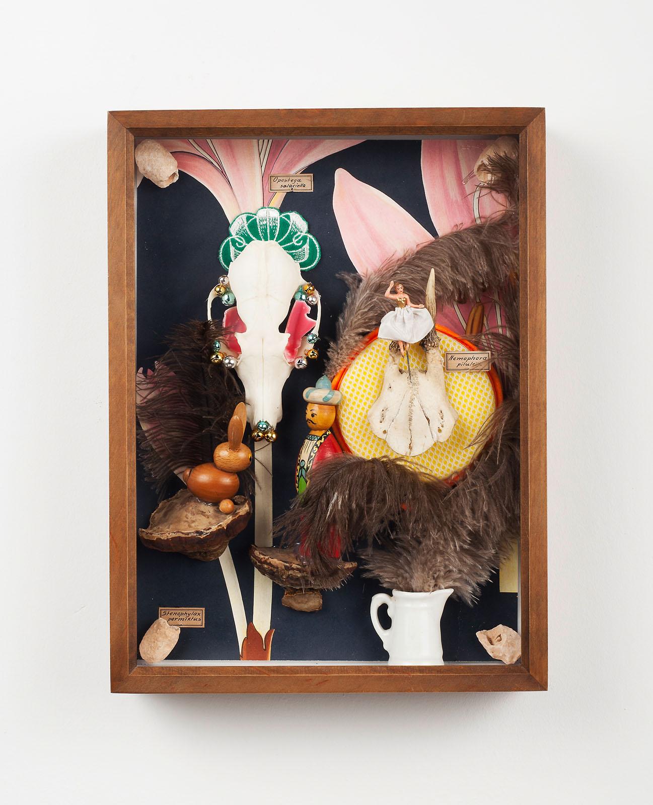 "o.T. aus ""Petrichor – Alpis"", 2018, 40 x 30 x 8 cm, diverse Materialien in Schaukasten"