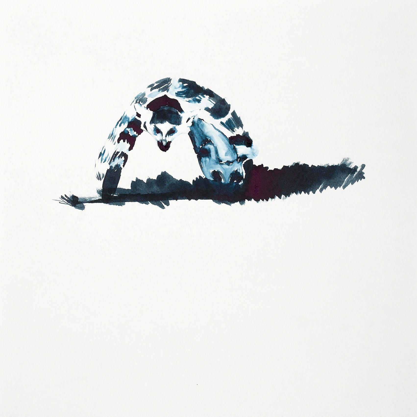 """o.T. aus """"Katta"""", 2016, 25 x 25 cm, Tusche auf Papier"""