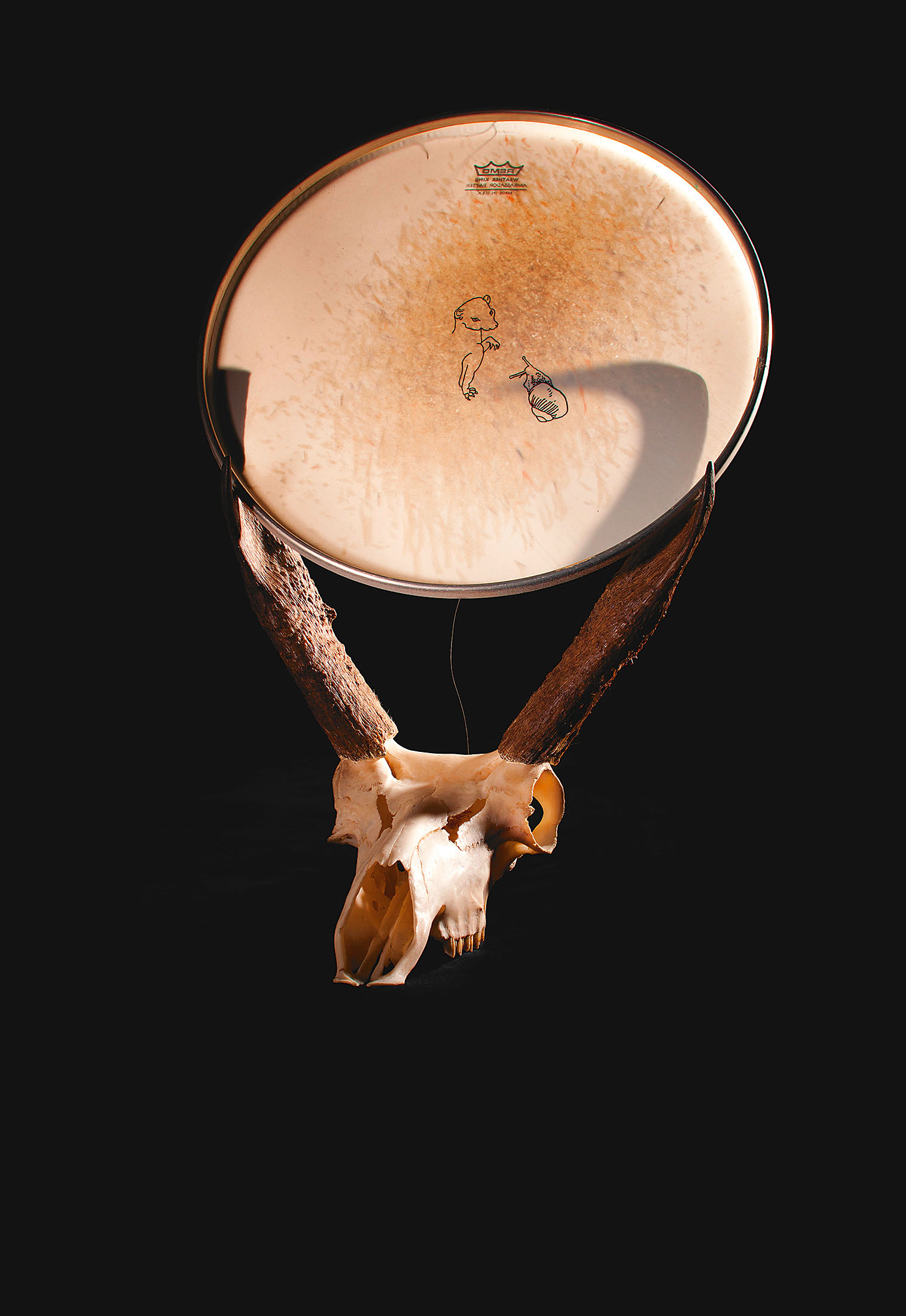 "o.T. aus ""Soft Skulls"", 2012, Antilopenschädel, diverse Materialien"