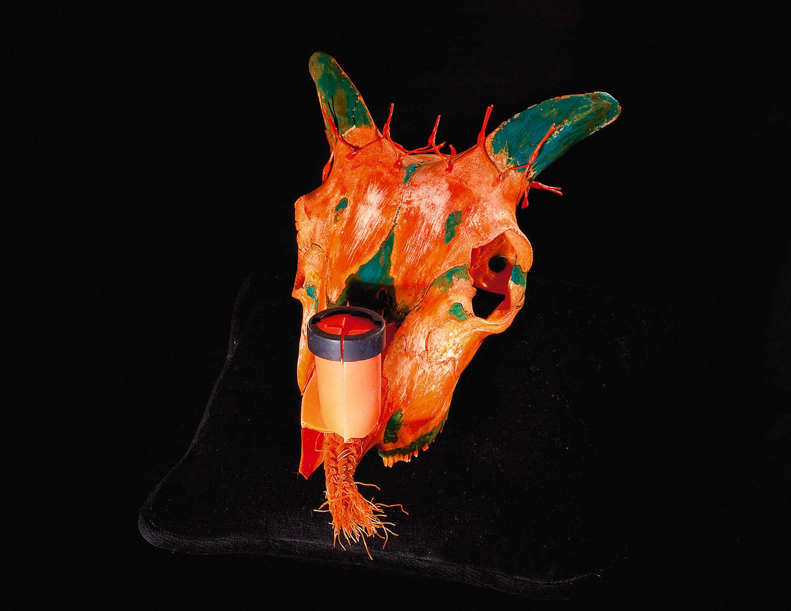 "o.T. aus ""Soft Skulls"", 2010, Ziegenschädel, diverse Materialien"