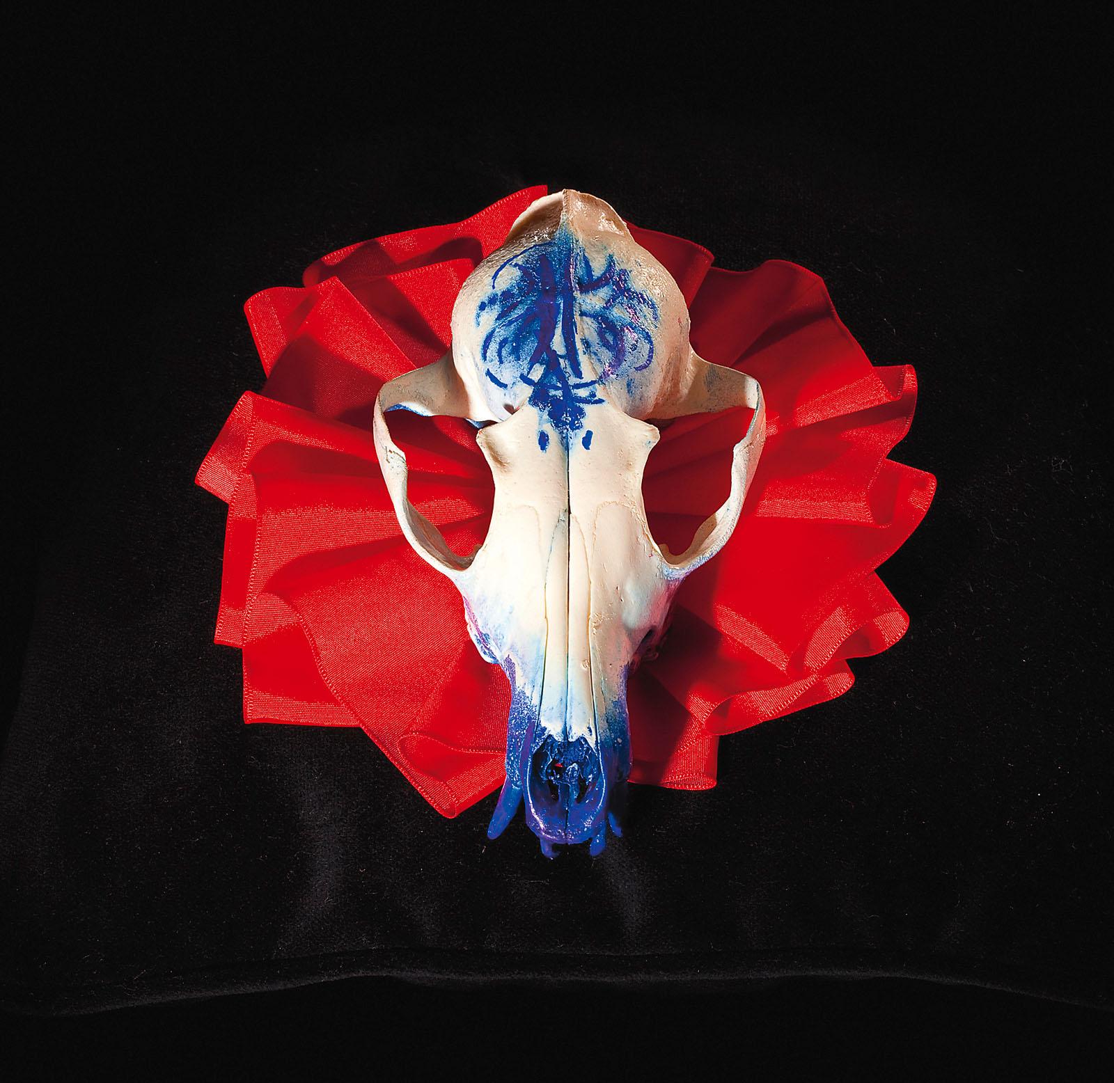 "o.T. aus ""Soft Skulls"", 2010, Fuchsschädel, diverse Materialien"